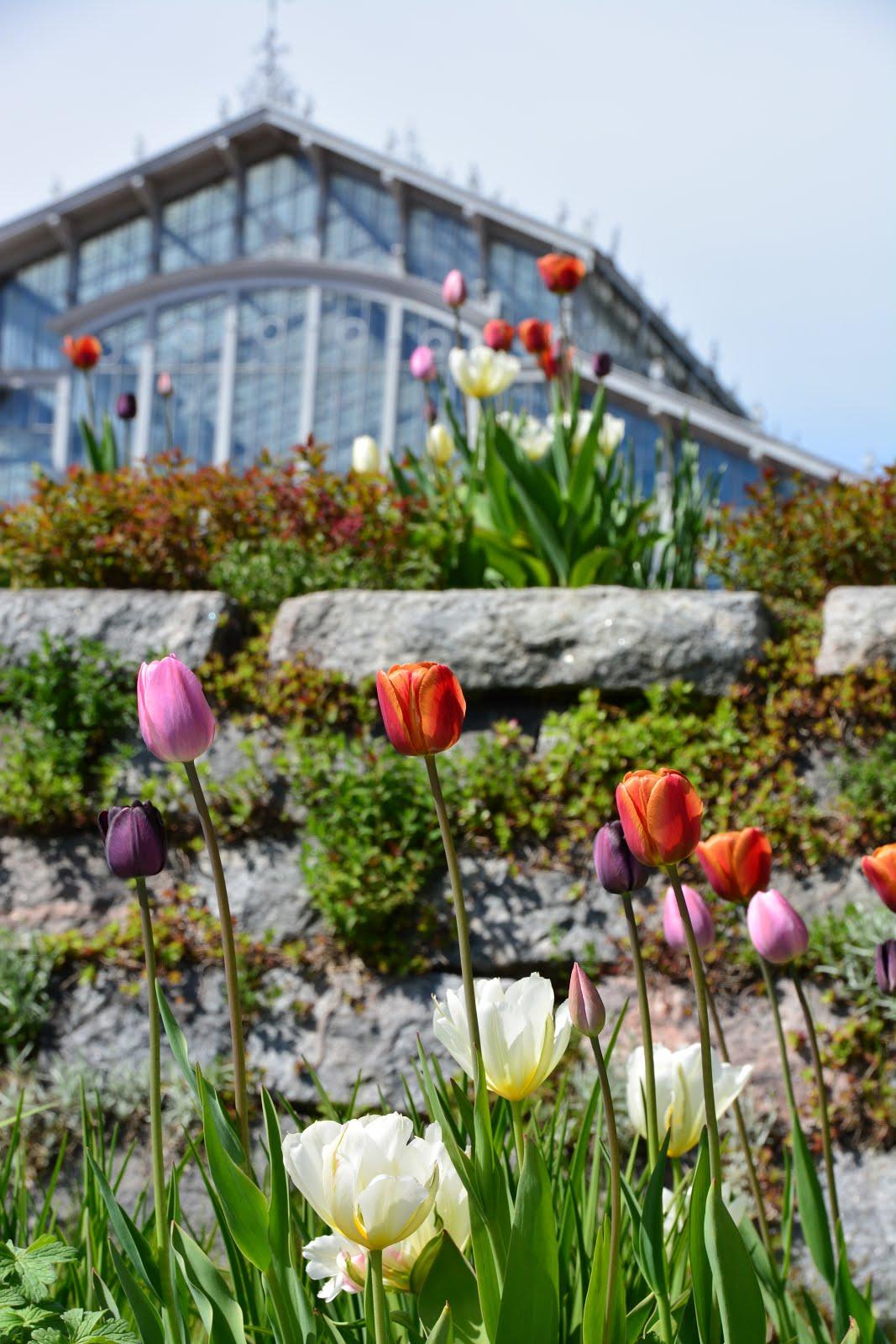Etsitkö kotimaista puutarhamatkailukohdetta - tai tiedätkö kivan sellaisen?