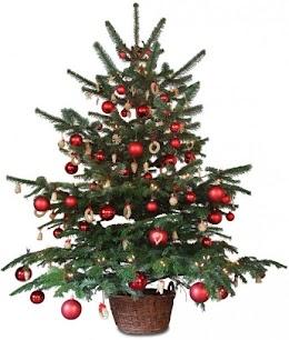 12 days of christmas Code kata