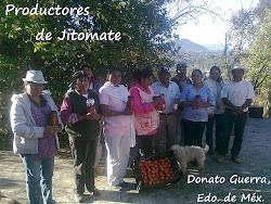 Grupo de Productores de Jitomate
