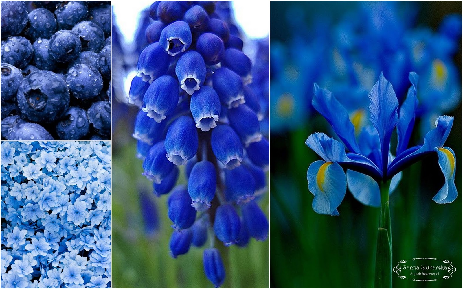 Темно-синий цвет в психологии