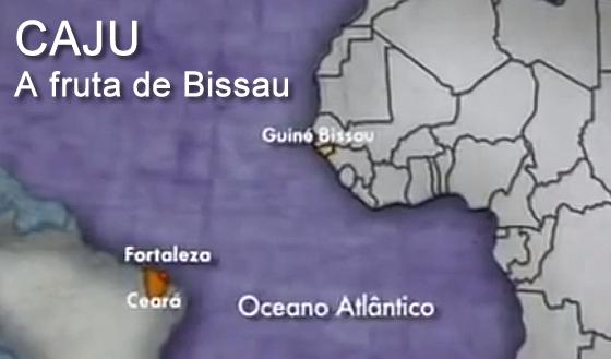 CAJU, A FRUTA DA GUINE BISSAU