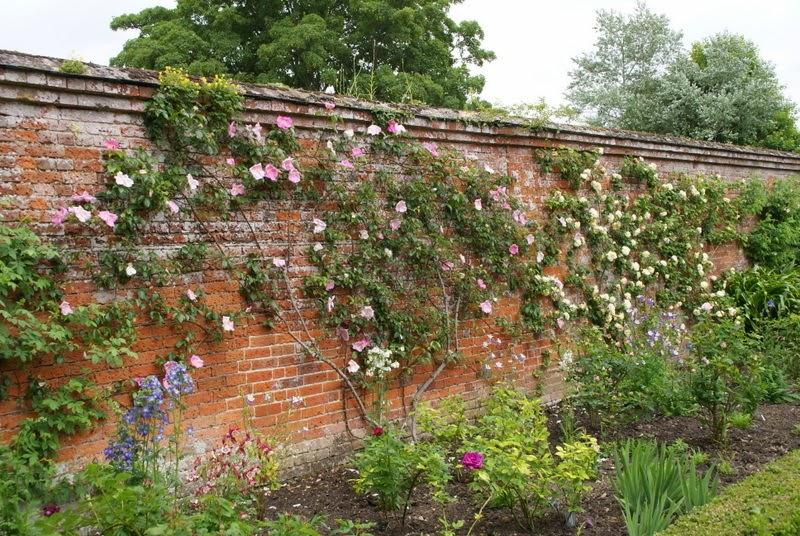 Plain Most Beautiful Rose Gardens In The World Garden No