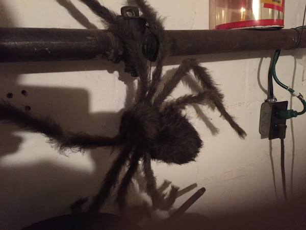 Giant Spider ~