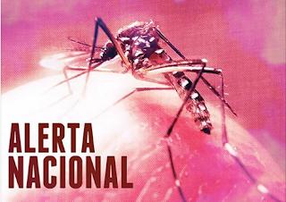 Ministério da Saúde confirma relação entre vírus Zika e microcefalia