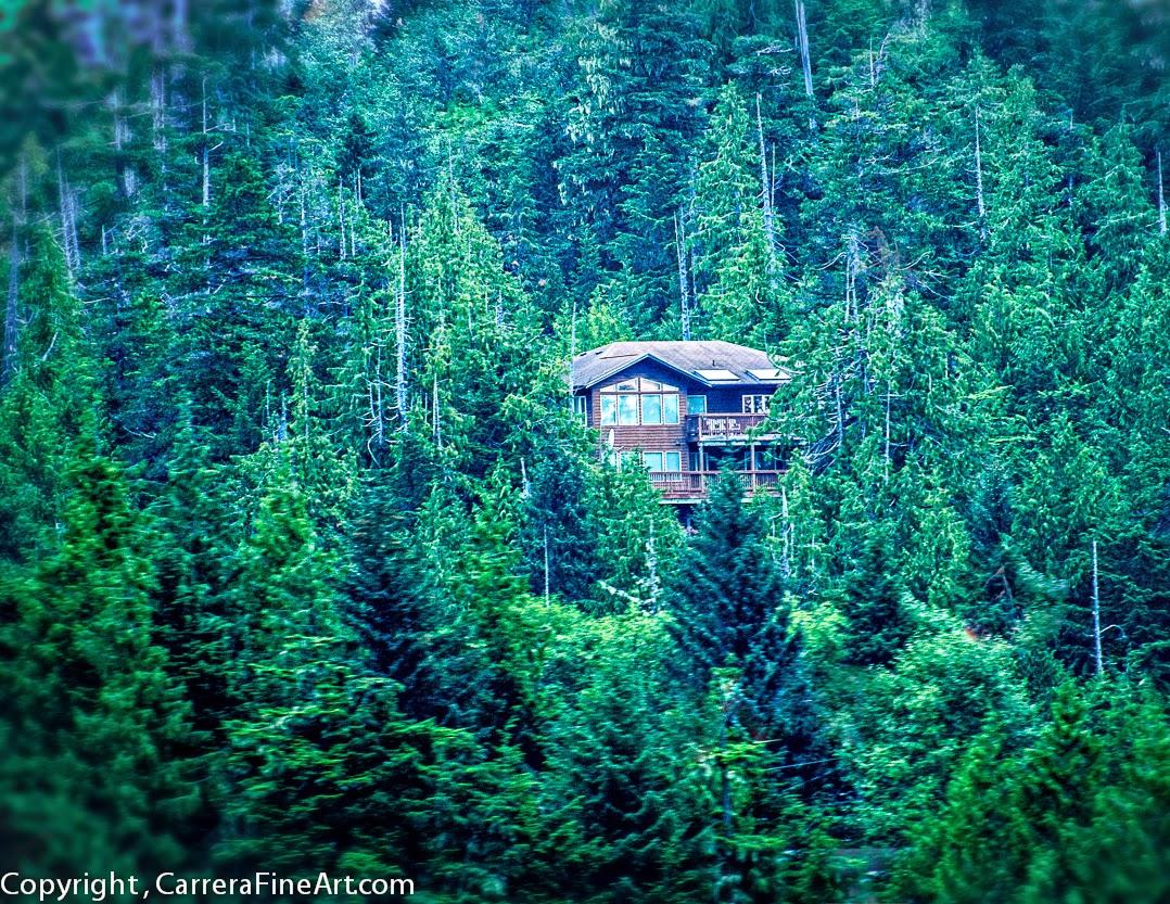 Living off the grid in alaska blog mom