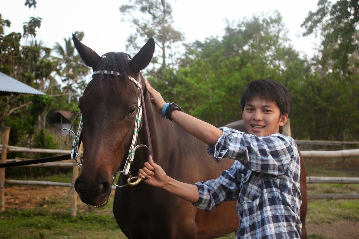 kuda - www.catatanbryant.com