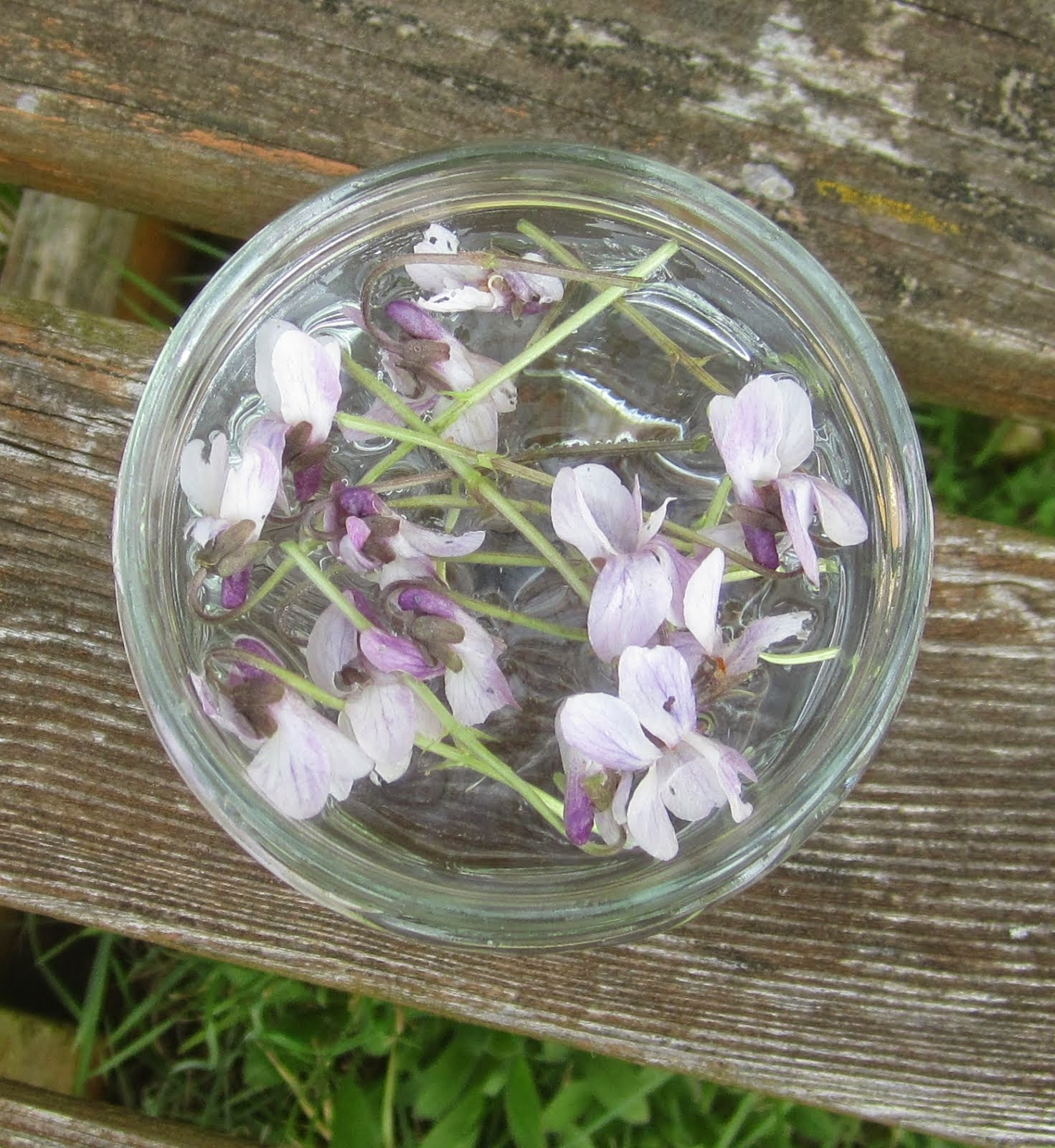 Flower essence set to infuse