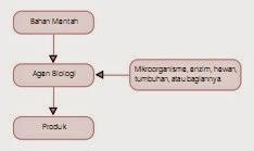Perkembangan dan Prinsip Dasar Bioteknologi