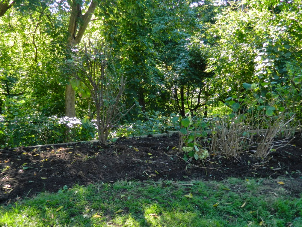 Baby Point garden cleanup Toronto after Paul Jung Gardening Services