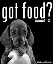 GOT FOOD? o movimento que ajuda associações de protecção a animais desfavorecidos