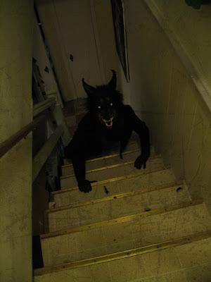 An ACO Halloween Tail