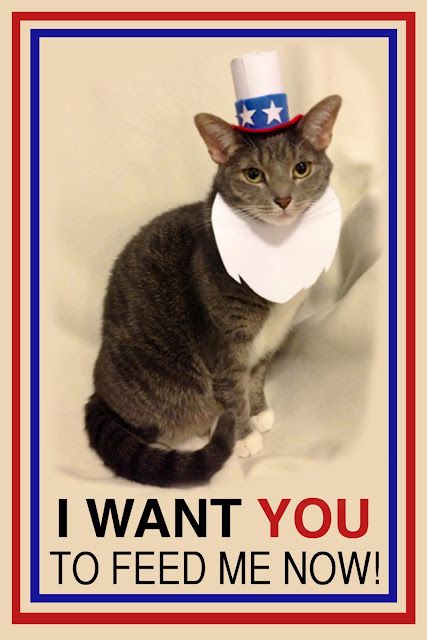 I Want You Cat