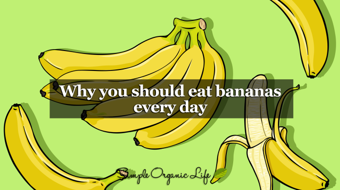 After You Read This, You Won't View The Humble Banana The Same Way