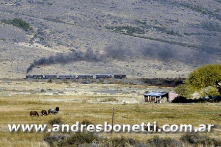 Viejo Expreso Patagonico - La Trochita - Esquel - Patagonia - Andrés Bonetti