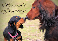 http://www.redbubble.com/people/sassyg/works/10986250-a-very-doxie-christmas-12?c=228724-long-dogs&p=greeting-card
