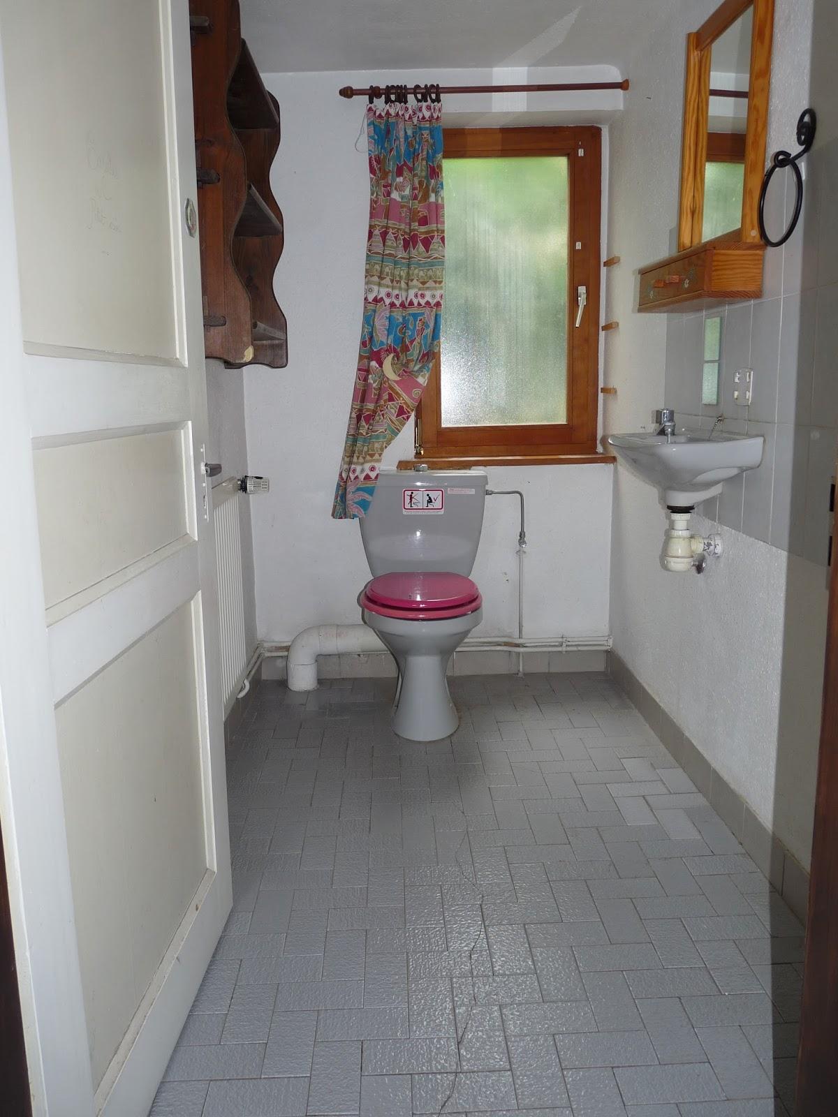Le petit monde de bidule toilettes relook es for Repeindre les toilettes