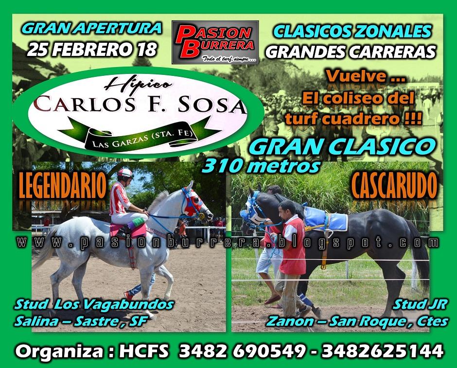 LAS GARZAS - 25 DE FEBRERO - 310