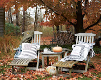 El otoño...son calabazas!