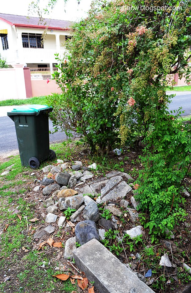 kawasan bekas rimbunan pohon Ulam Raja depan pagar