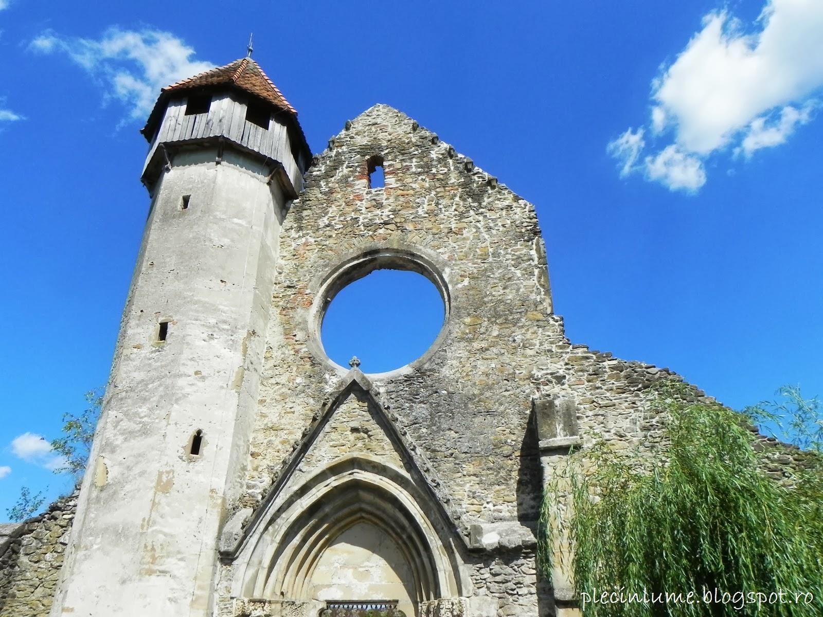 Ruinele manastirii cisterciene din Carta