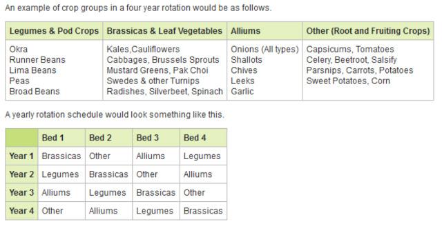 Vegetable Garden Bed - Crop Rotation Chart