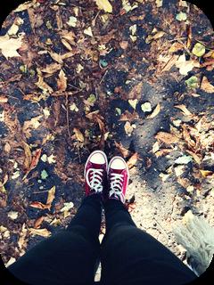 po prostu jesień....