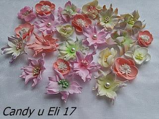 Candy Ela 17