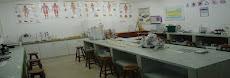 Lab. de Ciências