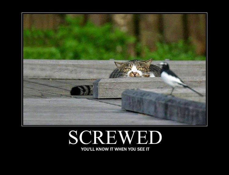Screwed and pissed off