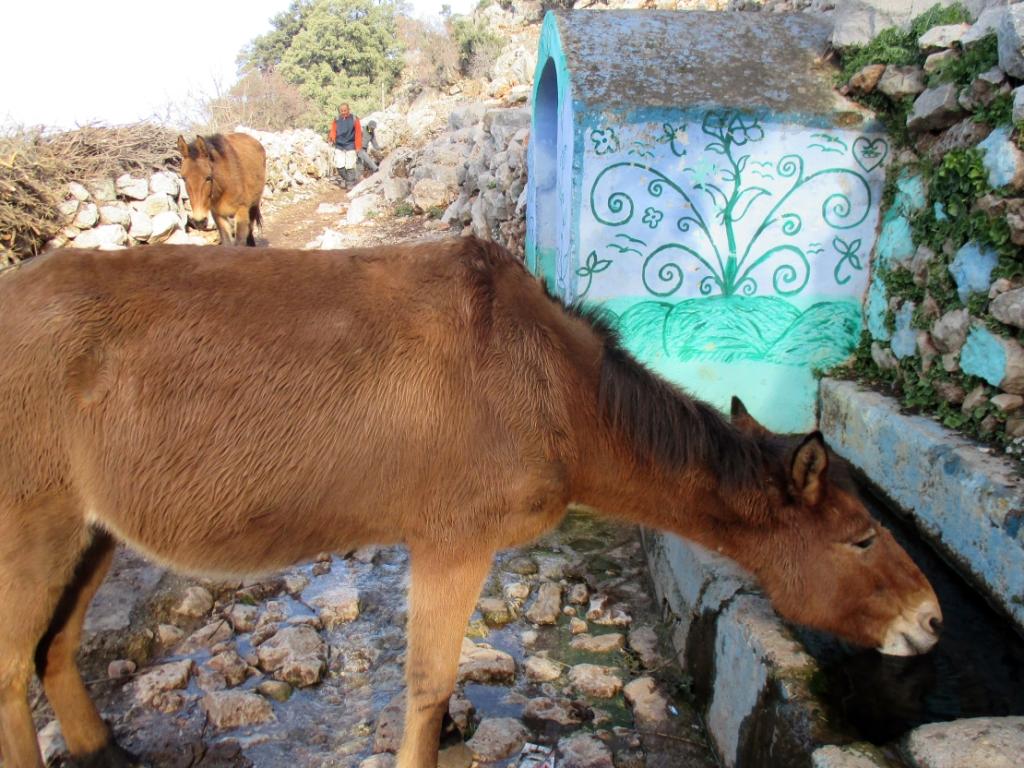 Addar, Marroc