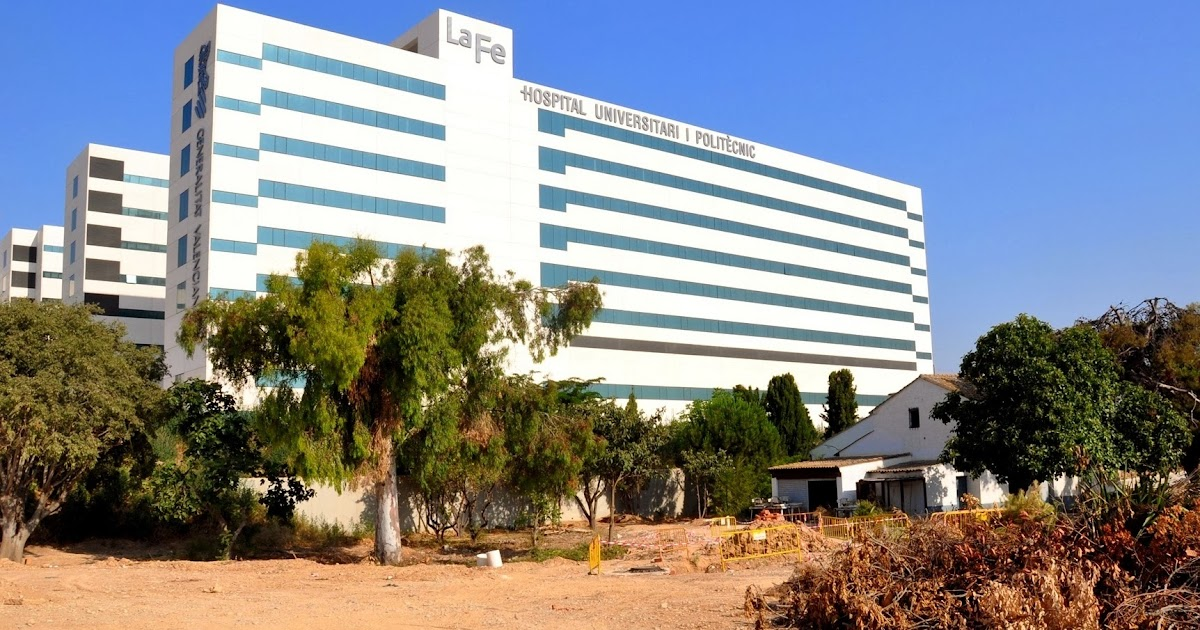 La torre a y el biopolo de la nueva fe ya lleva gastados - Hospital nueva fe valencia ...