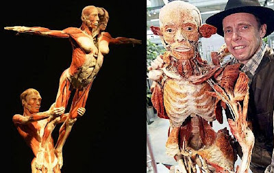 body-worlds-exhibit