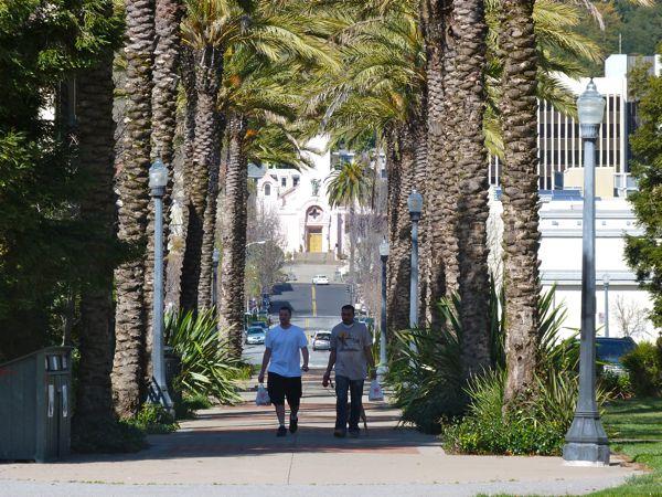 Walking San Francisco Bay Andersen Dr Wildcare March