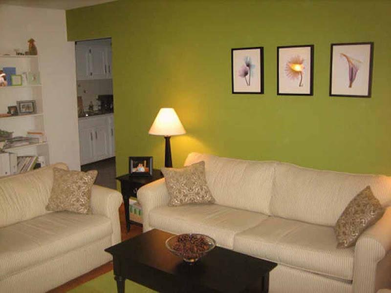 Living Room Paint Colors Ideas (7 Image)