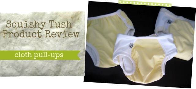 reviews of 3 cloth pull-ups: snap-ez, super undies pocket trainer, superundies nighttime
