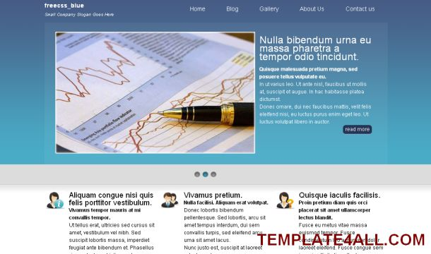 Finance Business Blue Website Template