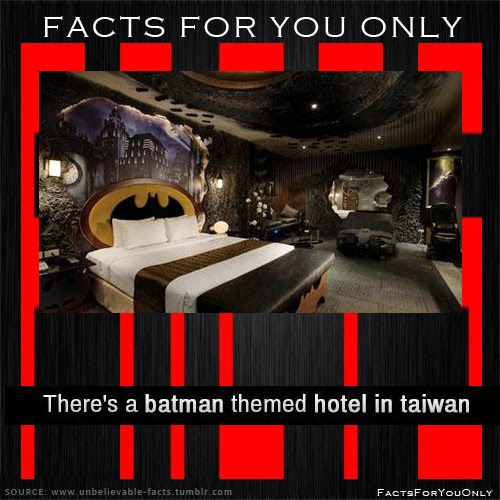 Facts For You Only There 39 S A Batman Themed Hotel In Taiwan