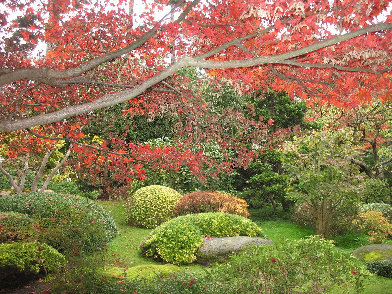 Le blog de parcs et jardins de l 39 oise le jardin albert - Les jardins albert kahn ...