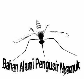 Bahan Alami Pengusir Nyamuk