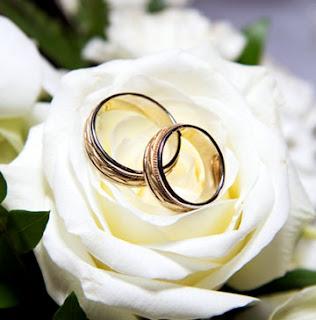 alyanskl Evlilik Yüzüğü Modelleri