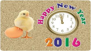 Happy New Year 2017 Status