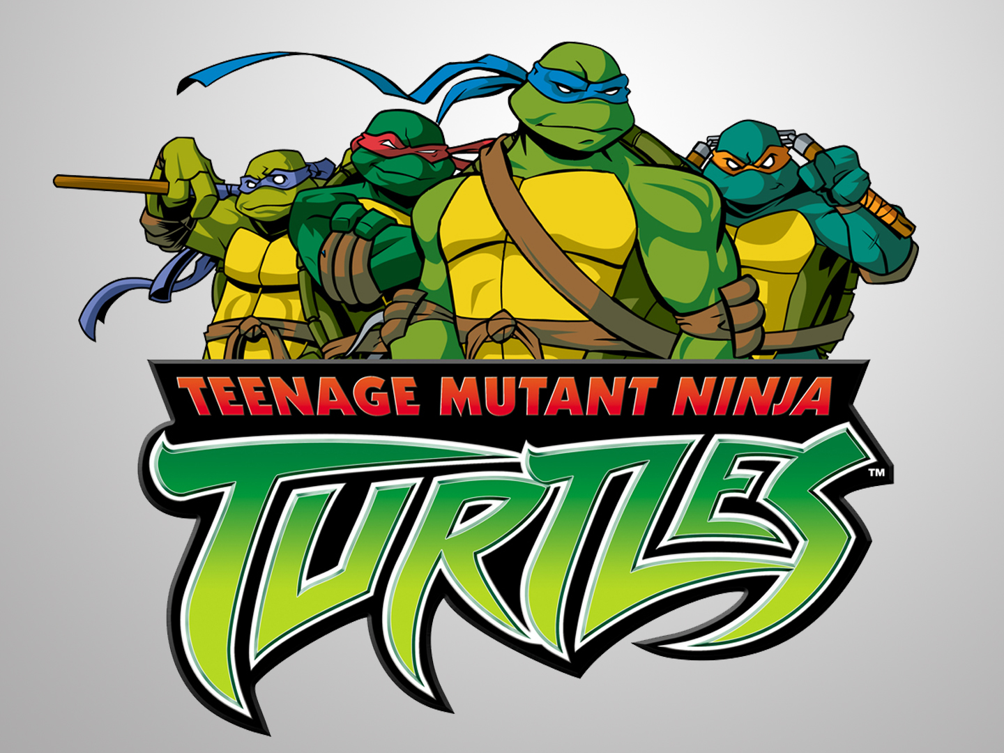 teenage turtle mutant ninja