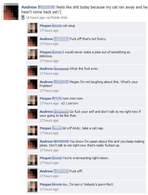 Facebook Status Trolling : Cat Ran Away