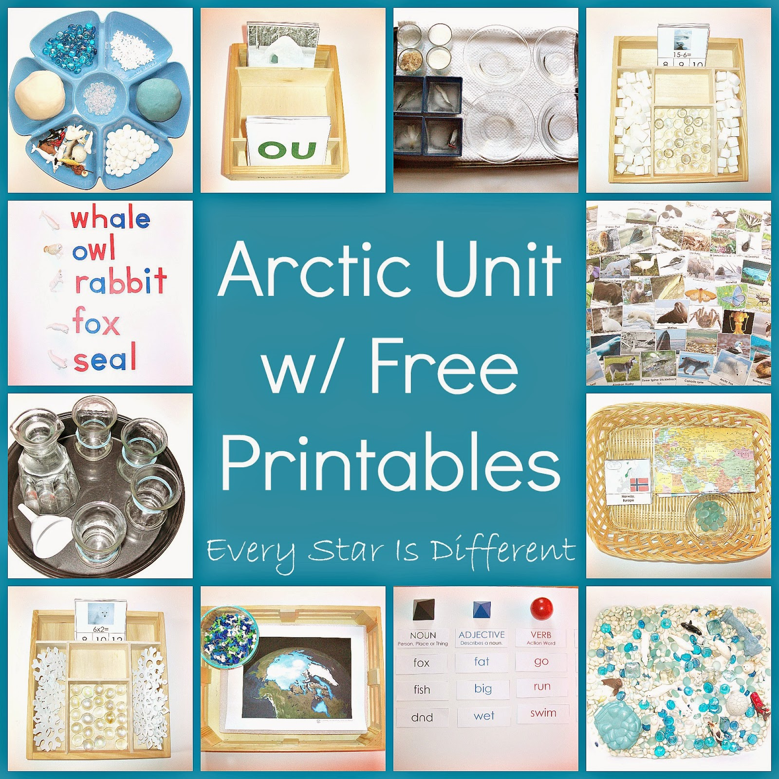 Arctic Unit w/ Free Printables - Every Star Is Different