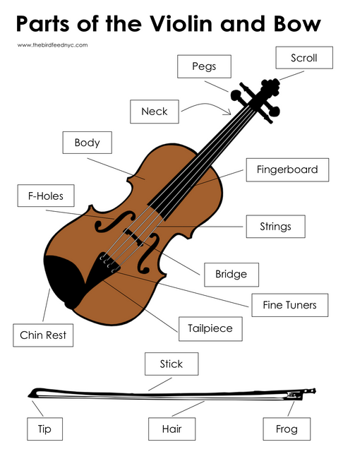 Our Music Blog : 2015 Term 3, Week 1: Instruments of the Orchestra ...