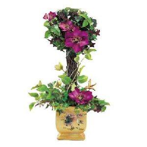 Order A Lena Liu Ivy Topiary