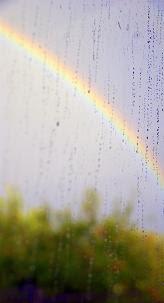 Rainbow Over Apple Tree, photo by Elspeth Briscoe