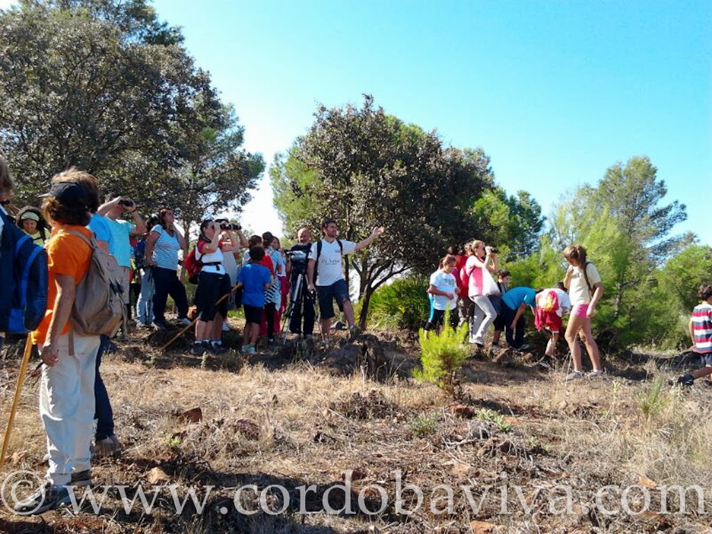 Grupo del Día Mundial de las aves en la Sierrezuela de Posadas ( Córdoba )