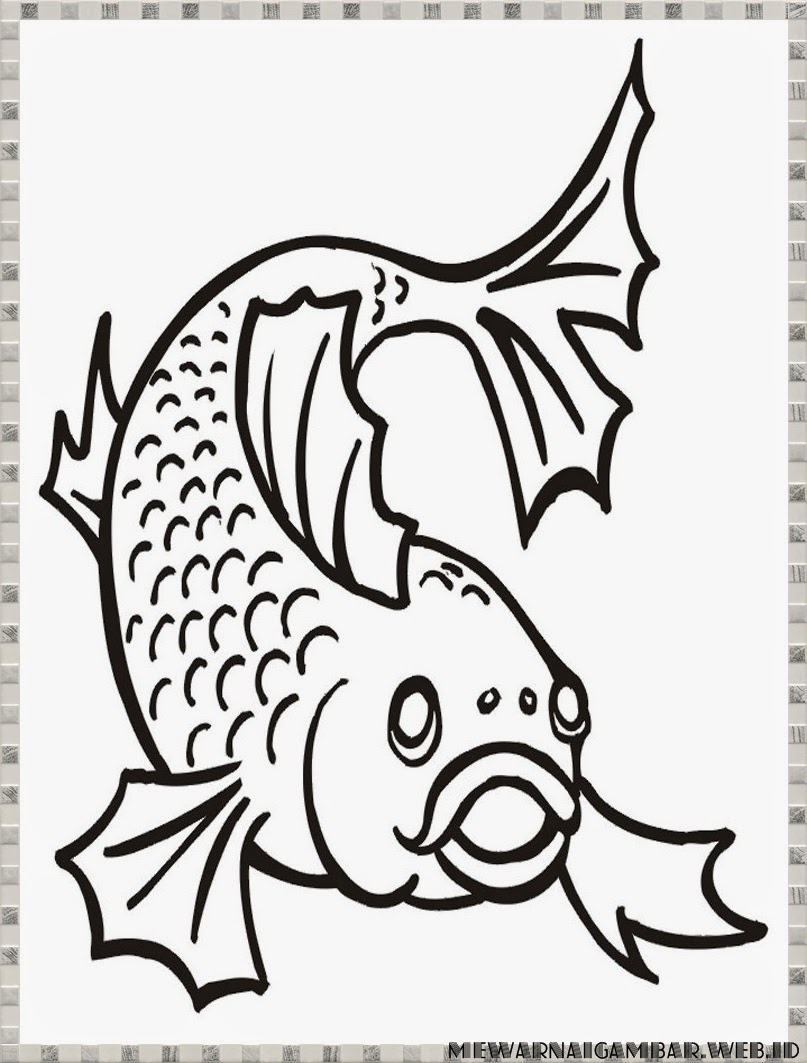 Gambar Ikan Mas Untuk Mewarnai