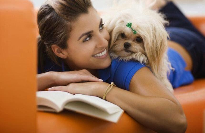 Los perros pueden distinguir los rostros enfadados de los alegres